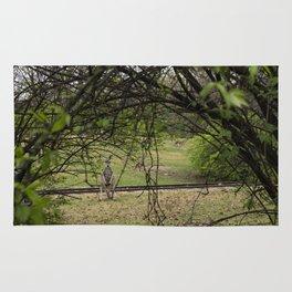 Roo through the Trees Rug
