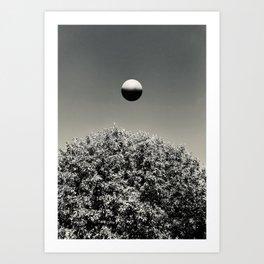 The Sighting Art Print