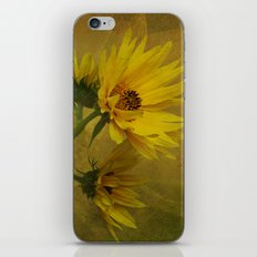 Let the Sun Shine iPhone & iPod Skin