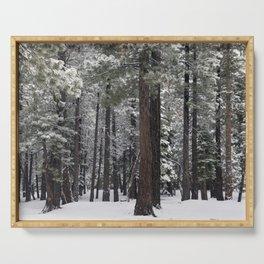 Winter Forest - Carol Highsmith Serving Tray