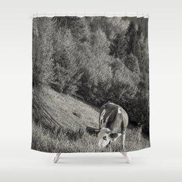 Road trip through E.U. - country side - V Shower Curtain