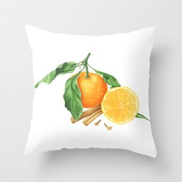 Tangerines and spices Throw Pillow