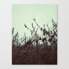 | Ode to January | Canvas Print