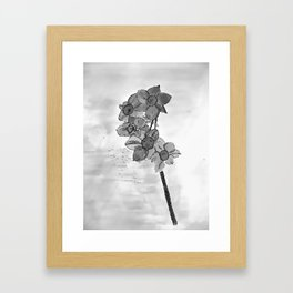 5 flowers in black and white Framed Art Print