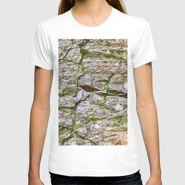 Levels, Glacier National Park T-shirt