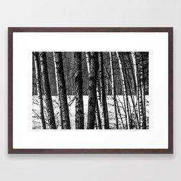 Fellows Framed Art Print