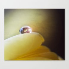 Yellow tear Canvas Print