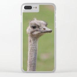 Ostrich Clear iPhone Case