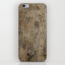Old Brittle Wall 2 iPhone Skin