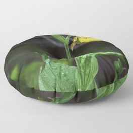 Lady Slippers Floor Pillow