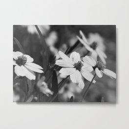 Gaggle of flowers too Metal Print