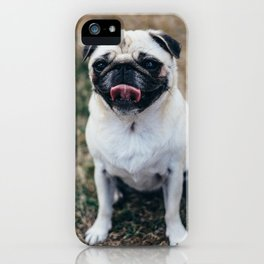 Dog by Guillaume LORAIN iPhone Case