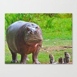 Hippo and monkeys Canvas Print
