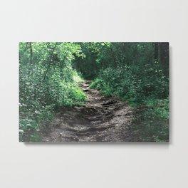 Woods III Metal Print