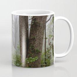 Smoky Mountain Summer Forest III - National Park Nature Photography Coffee Mug