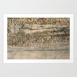 Rustic Wood Turquoise Weathered Paint Wood Grain Art Print Rustic Wood Turquoise Weathered Paint Woo Art Print