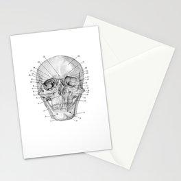 Anatomical Skull Stationery Cards