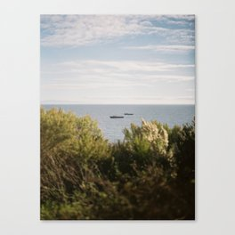 cliffside view of the pacific ocean Canvas Print