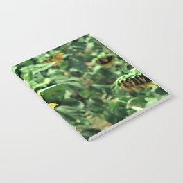 Flower No 6 Notebook