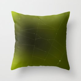 Spider web against green background Throw Pillow