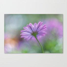 Spring Purple Canvas Print