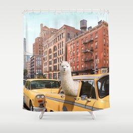 Alpaca in New York Shower Curtain