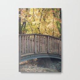 An Autumn Walk in the Park Metal Print