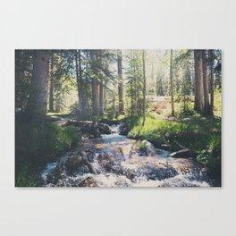 a mountain stream ... Canvas Print
