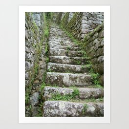 Steps on the Inca Trail Art Print