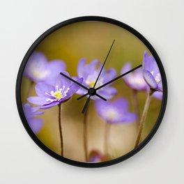Anemone hepatica II Wall Clock