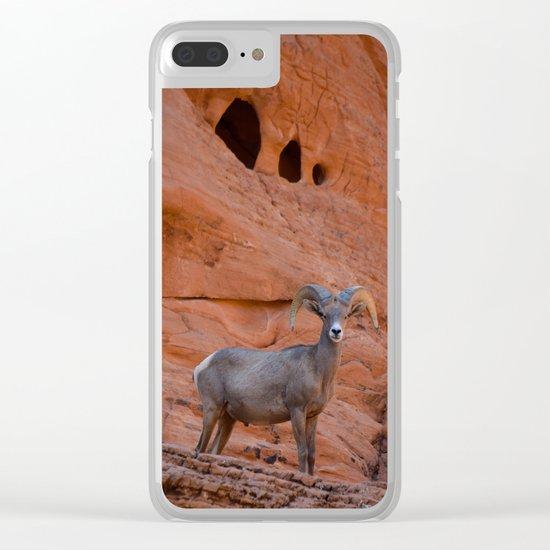 Desert Bighorn - Valley of Fire Clear iPhone Case