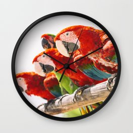 Red macaws Wall Clock