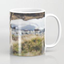Ibex in the cold Coffee Mug