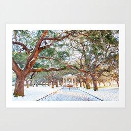 Snow White Point Gardens Art Print