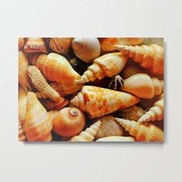 She Sells Sea Shells on the Sea Shore Metal Print
