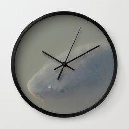 Misty Fish Wall Clock
