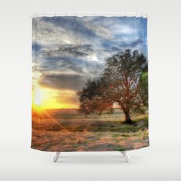 Lonely tree in a field Shower Curtain