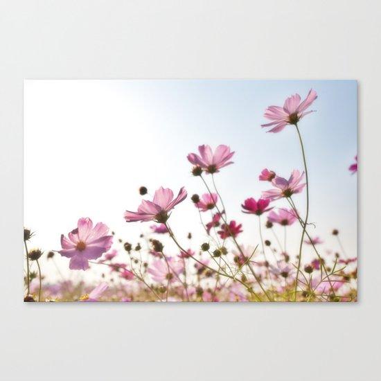 Plants flower Canvas Print