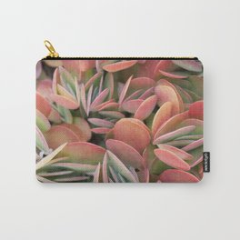 Succulents in Color Carry-All Pouch