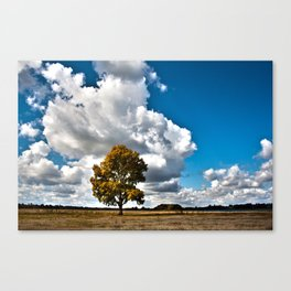 One Standing Alone Canvas Print