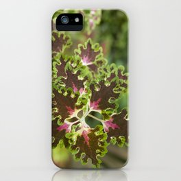 Coleus Inky Fingers iPhone Case