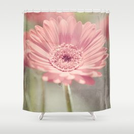 Gerbera Shower Curtain