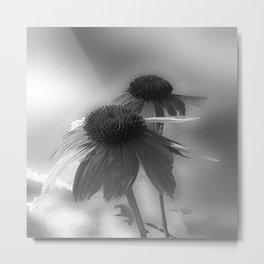 Windflower in Black and White Metal Print
