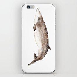 Beaked whale iPhone Skin
