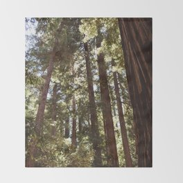 Redwood Forest XII Throw Blanket