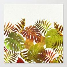 My Tropical Garden 19 Canvas Print