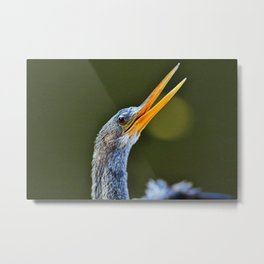 What I Want to Say Metal Print