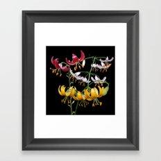 A trio of martagon lilies Framed Art Print