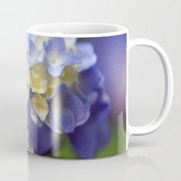 Hydrangea Coffee Mug
