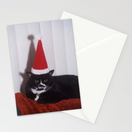 Luna's festive mood... Stationery Cards